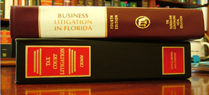 litigationsupport